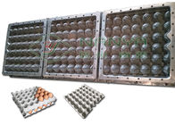 High Precision Pulp Moulding Dies / 30 Holes Egg Tray Pulp Mould